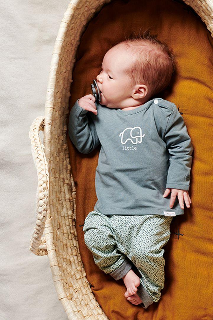 Organic Babyshirt Little salbei